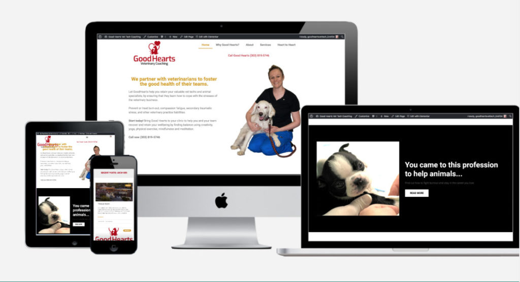 Good Heart Vet Tech Coaching website