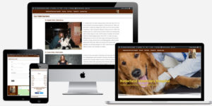 Nederland Veterinary Hospital website
